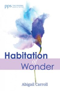 Habitation of Wonder by Abigail Carroll